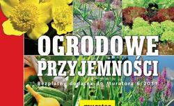 Ogrodowe przyjemności. Jak zrobić oczko wodne, skalniak, źródełko, ogród warzywny i ziołową rabatę