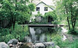 Czy Twój ogród to ekologiczny ogród? Sprawdź!
