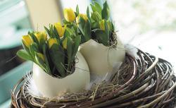 Stół na Wielkanoc. Zdjęcia, jak udekorować wnętrze wykwintnie i sielsko