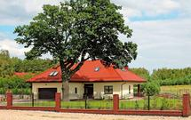 Parterowy dom jednorodzinny w cieniu wiekiego drzewa. Realizacja projektu Spokojna przystań, z kolekcji Muratora