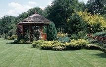 Jak dopasować rośliny do ogrodu według Twojego trybu życia?