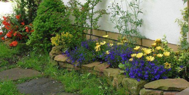 Kwiaty ogrodowe. Rozsada roślin jednorocznych