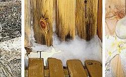 Pleśń w domu: jak usunąć grzyba ze ścian?